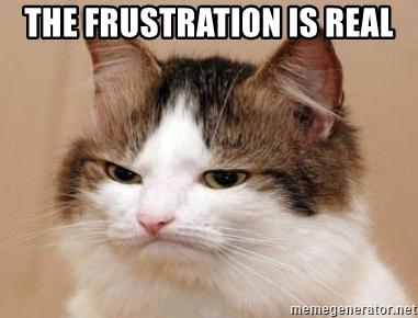 Frustration is real cat meme